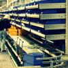 Produttività, l'Italia perde punti preziosi