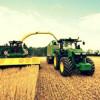 È fuga dei giovani dalla campagna: under 35 solo il 5% degli agricoltori