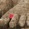 I segnali di una ripresa con i piedi d'argilla
